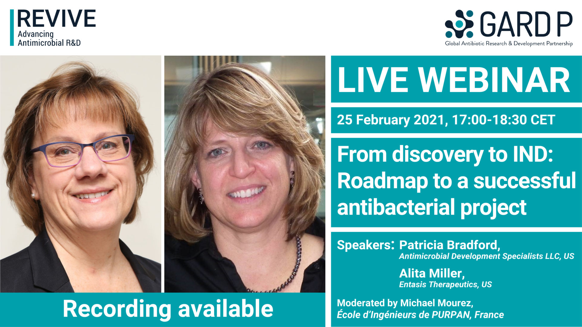 From discovery to IND: Roadmap to a successful antibacterial project