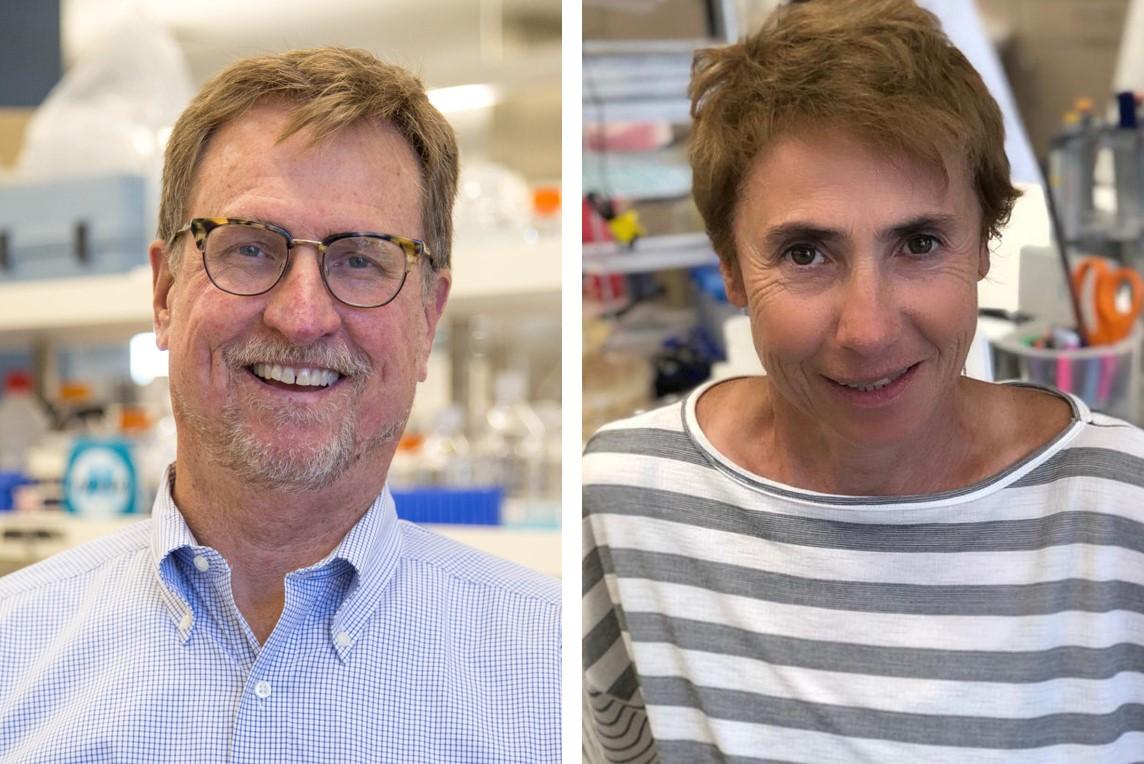 <br>Will new antibiotic classes solve multidrug resistance?</br><em> – by Michael N. Dudley and Olga Lomovskaya</em>